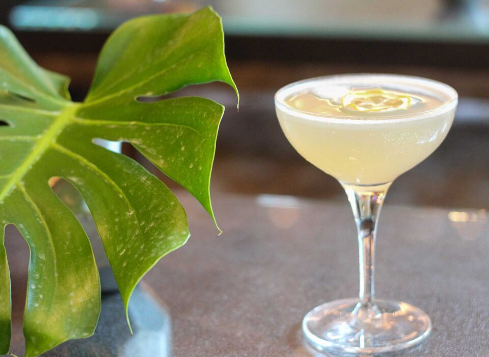 tall clear glass with a yellow cocktail garnished with dried lemon